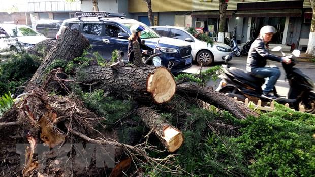 Trung Quốc: Bão mạnh ở Giang Tô làm hơn 100 người thương vong