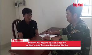 Đồn Biên phòng CKQT Mộc Bài: Bắt đối tượng trộm xe máy đem sang Campuchia tiêu thụ