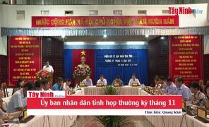 Ủy ban nhân dân tỉnh họp thường kỳ tháng 11