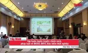 Tập huấn tuyên truyền chính sách, pháp luật về BHXH, BHYT, Bảo hiểm thất nghiệp