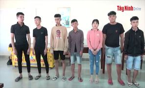 Bắt giữ nhóm thiếu niên cố ý làm hư hỏng tài sản của dân