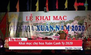 TP.Tây Ninh: Khai mạc chợ hoa Xuân Canh Tý 2020