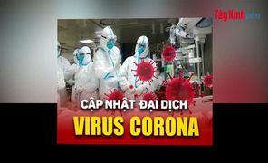 Video Cập nhật tình hình dịch cúm virus viêm phổi Vũ Hán đến 12g, ngày 2.2