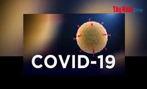 Video Cập nhật mới nhất tình hình dịch bệnh Covid-19 tính đến 17 giờ 30, ngày 27.3.2020