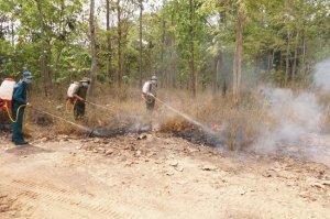 Nguy cơ cháy rừng còn rất cao