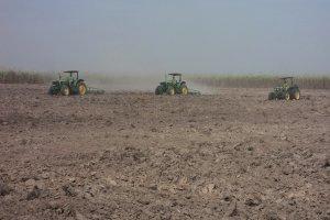 Kỳ cuối: Giải pháp nào để phát triển bền vững ngành mía đường?