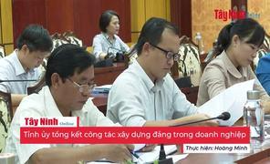 Tỉnh ủy Tây Ninh tổng kết công tác xây dựng Đảng trong doanh nghiệp