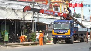 Điện lực Tây Ninh: Khẩn trương di dời đường điện trung hạ thế tuyến đường ĐT782-784