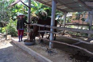 Tây Ninh nỗ lực trong công tác giảm nghèo