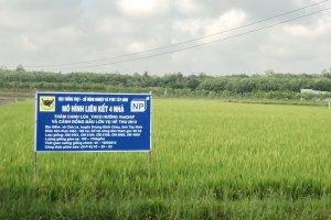 Phát triển nền nông nghiệp thông minh