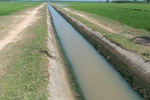 Xã Phước Vinh nỗ lực hoàn thành các tiêu chí trong xây dựng nông thôn mới