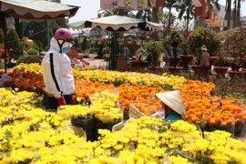 Tây Ninh: Khai mạc chợ hoa Xuân Tân Sửu năm 2021