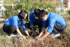 """Thực hiện Đề án """"Trồng một tỷ cây xanh giai đoạn 2021-2025"""""""