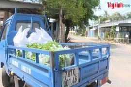 Sư đoàn 5: Hỗ trợ 6.500 kg rau, củ quả cho người dân thành phố Tây Ninh