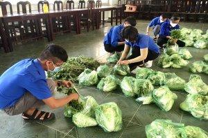 Chung sức hỗ trợ nông dân thúc đẩy sản xuất, thu hoạch và tiêu thụ nông sản