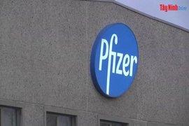Pfizer chỉ làm việc trực tiếp với các chính phủ và tổ chức