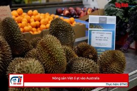 Nông sản Việt ồ ạt vào Australia