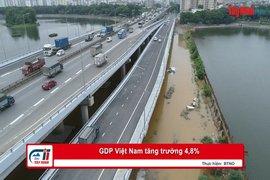 GDP Việt Nam tăng trưởng 4,8%