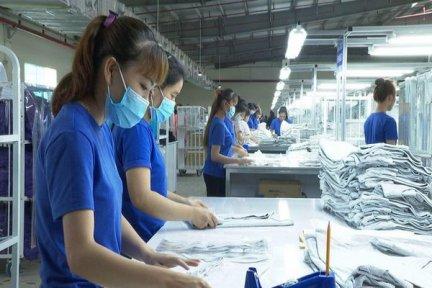 Kết nối, tạo việc làm cho người lao động về từ các địa phương trên địa bàn tỉnh Tây Ninh