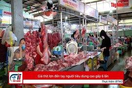 Giá thịt lợn đến tay người tiêu dùng cao gấp 6 lần