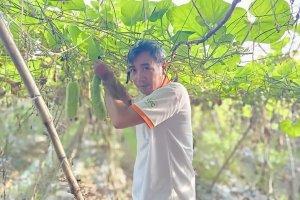 Hỗ trợ đưa hộ sản xuất nông nghiệp lên sàn thương mại điện tử