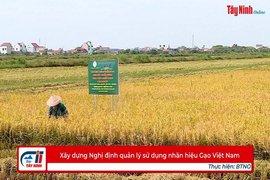 Xây dựng Nghị định quản lý sử dụng nhãn hiệu Gạo Việt Nam
