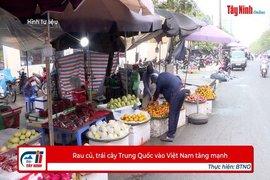 Rau củ, trái cây Trung Quốc vào Việt Nam tăng mạnh