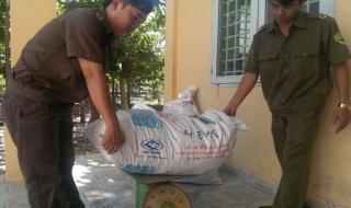 Châu Thành: Tiêu huỷ 72 kg đĩa sấy khô