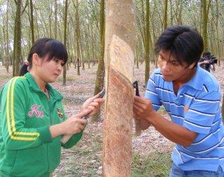 Đào tạo nghề cho lao động nông thôn và giáo dục lao động xã hội có gì bất cập ?