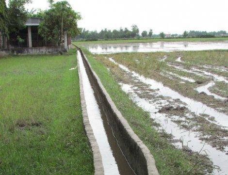 Xã Long Thuận: Cơ bản đạt 19 tiêu chí xây dựng nông thôn mới