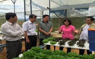 Tập trung phát triển nông nghiệp ứng dụng công nghệ cao gắn với cơ cấu lại nông nghiệp