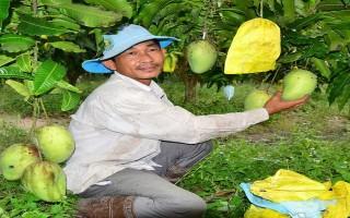 Cả nước chung tay cùng Tây Ninh thực hiện mô hình điểm kinh tế nông nghiệp bền vững