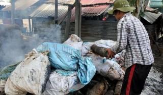 Tiêu huỷ 123 kg xương bò nhập lậu