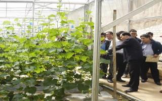 Hội thảo quốc tế về phát triển chuỗi giá trị nông nghiệp hội nhập thị trường quốc tế