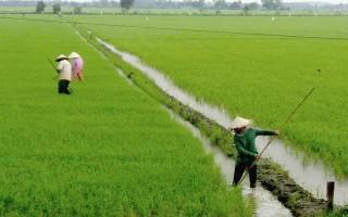 Năm 2016, xã Bình Minh duy trì chất lượng các tiêu chí xã nông thôn mới