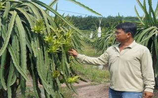 Nông dân hướng đến nền nông nghiệp công nghệ cao
