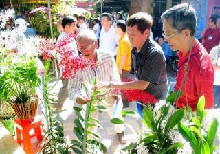 Hòa Thành: Tổ chức hội thi Hoa phong lan mở rộng