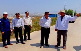Chủ tịch UBND tỉnh thăm Trang trại bò sữa Tây Ninh