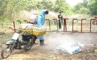 Phát hiện ổ dịch cúm gia cầm ở Bến Cầu