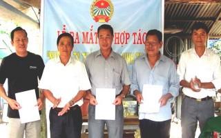 Ra mắt Tổ hợp tác chăn nuôi gà ta thả vườn phường Ninh Sơn