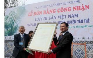 Bộ VH-TT&DL yêu cầu dừng xét tặng danh hiệu tràn lan