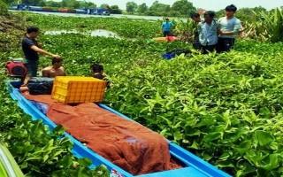 Công an Tây Ninh: Bắt giữ hơn 10.000 gói thuốc lá lậu