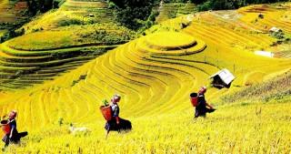 Vẻ đẹp Việt Nam qua góc nhìn một doanh nhân Argentina