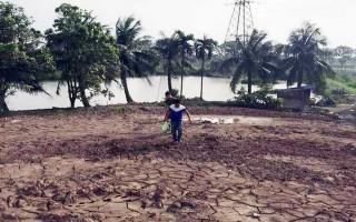 Xác minh vụ đổ trộm 3.750 m3 bùn thải ra môi trường ở Hải Phòng