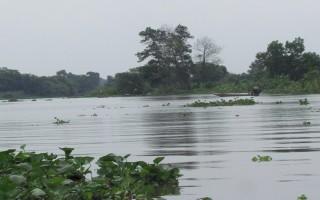 Du lịch Tây Ninh: Ðộc đáo rạch Trảng Bàng