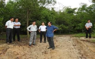 Sẽ xử lý nghiêm các cá nhân có liên quan đến vụ khu rừng lịch sử Bời Lời bị xâm hại