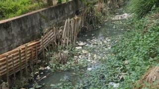 Xã Bình Thạnh: Nhiều mương thoát nước ô nhiễm trầm trọng
