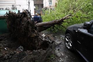 Nga: Bão lớn ở Moscow làm 16 người thiệt mạng