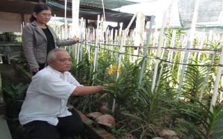 Thành lập Tổ hội nghề trồng hoa lan