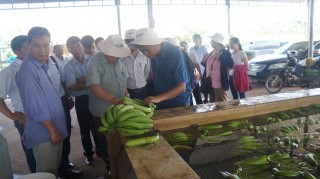 Đại học Nam Philippine: Thăm, thảo luận chương trình phát triển nông nghiệp tại Tây Ninh